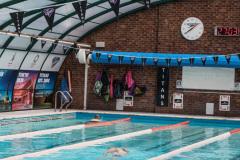 Ellesmere_swimming